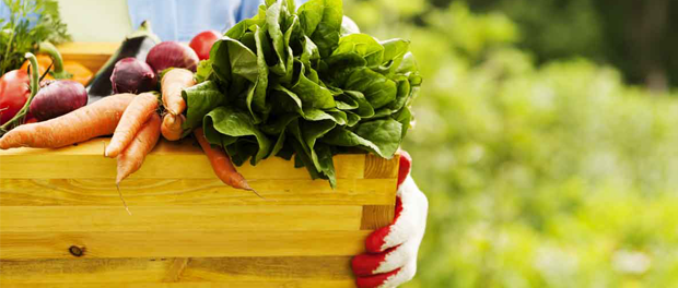 Biopotraviny #zdraví